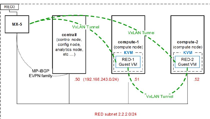 Packet Expert Archives - NetworkingNexus net